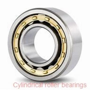 American Roller CM 136 Cylindrical Roller Bearings