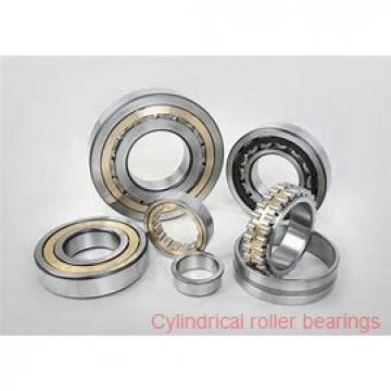 American Roller D 6236 Cylindrical Roller Bearings