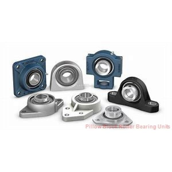 1.2500 in x 6 to 6.38 in x 2-3/4 in  Dodge P2BDI104RE Pillow Block Roller Bearing Units #1 image